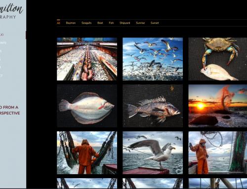 CHamiltionPhotography.com